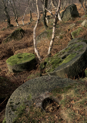 Abandoned millstones in woodland, at Lawrence Field, on the Longshaw estate