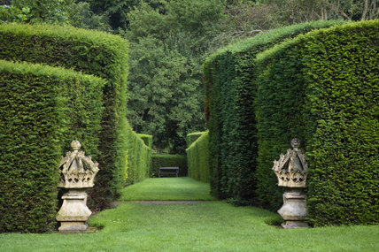 The Long Walk at Wightwick Manor, Wolverhampton, West Midlands, with clipped yew hedges