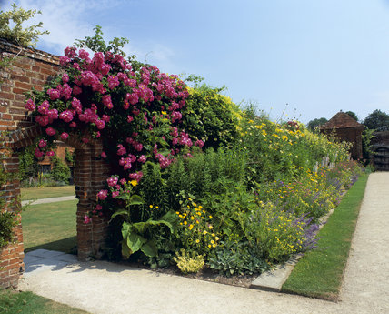 Roses scrambling over a brick arched entrance in the garden at Packwood House, Warwickshire