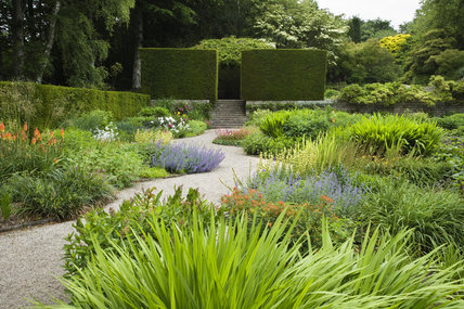Herbaceous planting in the Terrace garden at Castle Drogo, near Exeter, Devon
