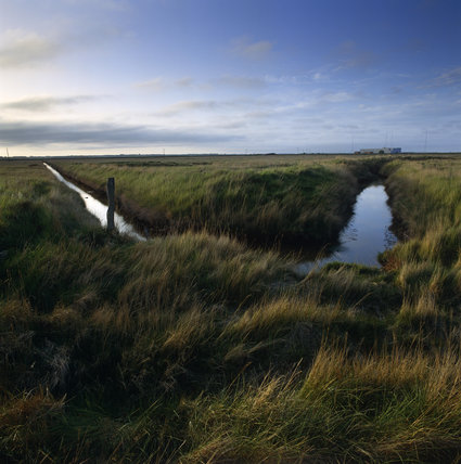 Drainage ditches on Kings Marsh