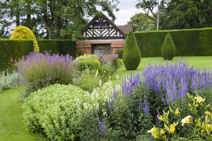Blue and yellow planting in the Formal Garden at Wightwick Manor, Wolverhampton, West Midlands