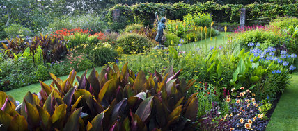 Herbaceous borders and