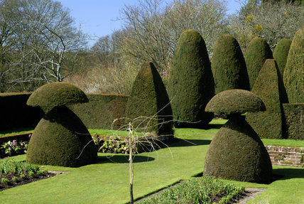 Topiary in the Sunken Garden in April at Hinton Ampner, Hampshire