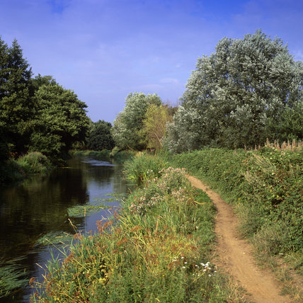 Towpath at Walsham on the River Wey Navigations, Surrey