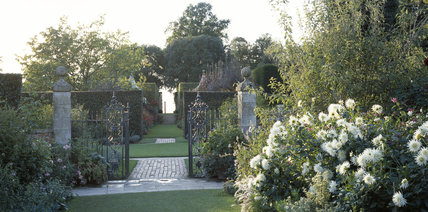 Long shot from the gate of the Old Garden at Hidcote, taken in the evening towards the Terrace,showing the grass and steps of the clipped hornbeam hedges