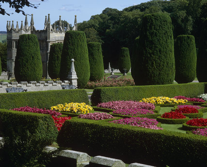 Colourful red, pink and yellow flowers in the geometric box-edged parterre in the garden at Lanhydrock