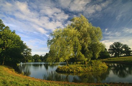 A view of the lake at Philipps House (formerly Dinton House) Wiltshire, in mid-summer
