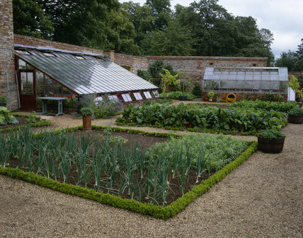 The Kitchen Garden at Oxburgh Hall, in July, showing the neat beds of vegetables and two greenhouses