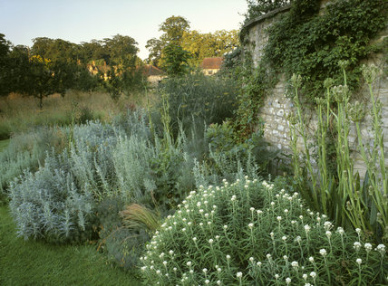 Herbaceous border on the west side of the garden at Nunnington Hall showing the wall and some buildings in the back ground