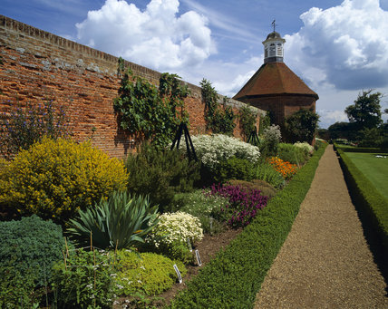 The Walled Garden, in July, at Felbrigg Hall, with Stachys officianalis (Betony) and Chrysanthemum parthenium (Feverfew) in full bloom along the border