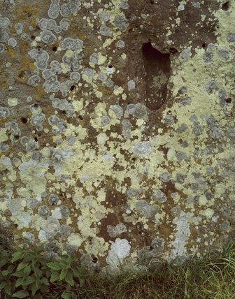 Close up view of lichen on a stone at the Neolithic site of Avebury in Wiltshire