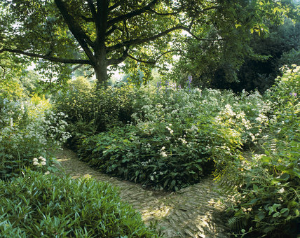 The Lower Stream Garden at Hidcote Manor Garden, Gloucestershire, with rough stone paths and lush foliage which enjoys the cool, damp planting conditions