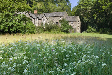 The Mill at Cotehele, near Saltash, Cornwall