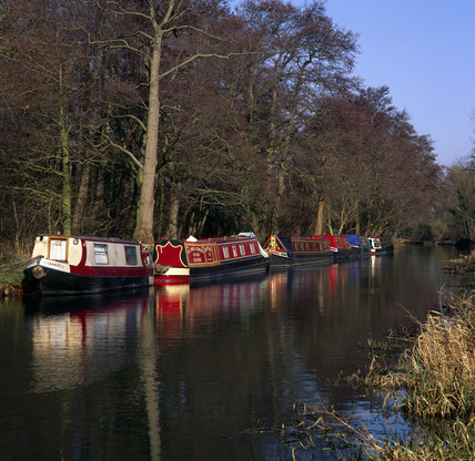 Winter moorings at Walsham on the River Wey Navigations, Surrey