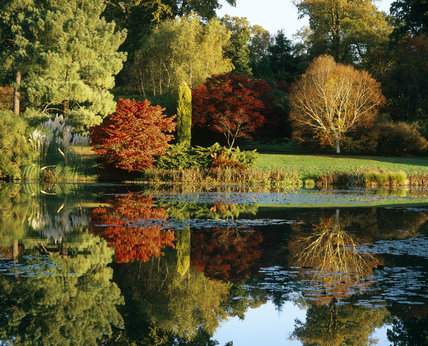 Autumn colour reflected in the lake at Sheffield Park, East Sussex
