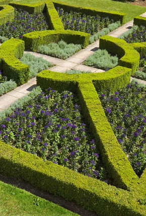 The parterre garden to the south of Mottisfont Abbey, Hampshire
