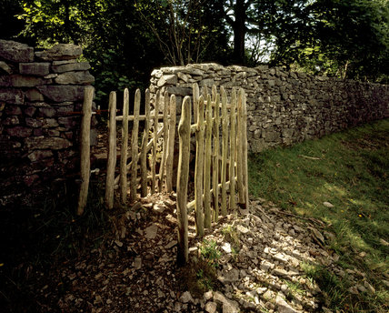 A gateway of stripped branches in a drystone wall at Arnside Knott in S.E. Cumbria. The pattern appears to be a traditional one in this area & is in the 'kissing gate' style.