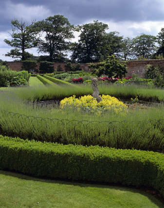 The Walled Garden at Felbrigg Hall in July, featuring a statue, surrounded by Alchemilla mollis (Lady's Mantle) and Lavender intermedia