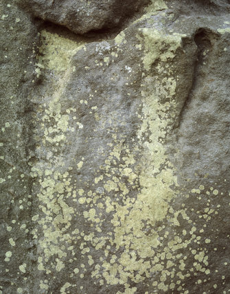 Close up view of a stone covered by lichen at the archaeological site of West Kennet Avenue in Wiltshire