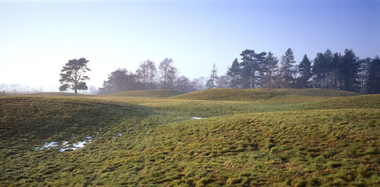 A view looking across the burial mounds at Sutton Hoo with trees in the far distance