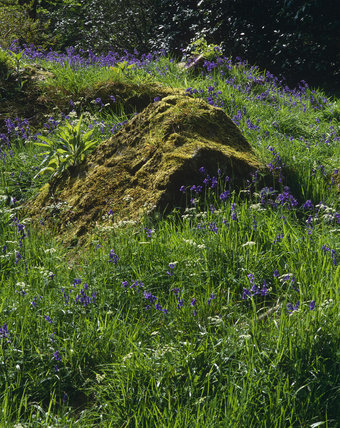 A view of taken of a pertruding rock, typical of the area, covered in moss, and surrounded by flowering plants, at Rowallane, County Down, Northern Ireland