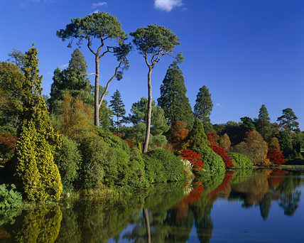 View across the Middle Lake at Sheffield Park Garden in the autumn