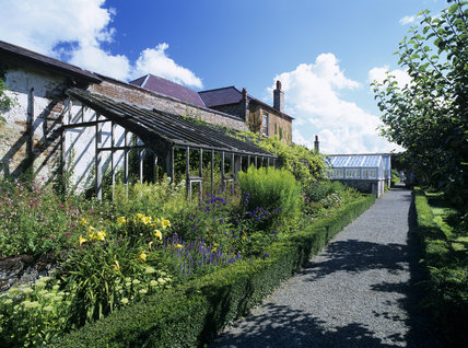 Long view of derelict greenhouse, with flower beds and path in front, under restoration at Llanerchaeron, a Nash house designed in the 1790's