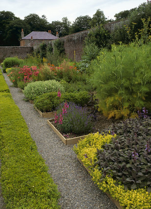 The herb garden in the East Walled Garden; looking west with the Bailiffs House in the background at Llanerchaeron