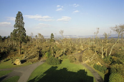 Storm damage at Emmetts Garden in October 1987
