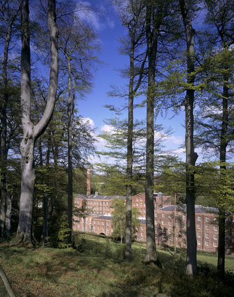 Rear view of Quarry Bank Mill through the trees