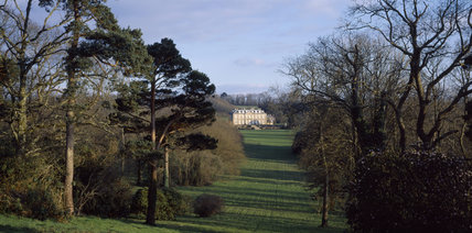Distant view of Antony House in spring, down a break in the woodland that radiates from the house, leading to the river Chyner
