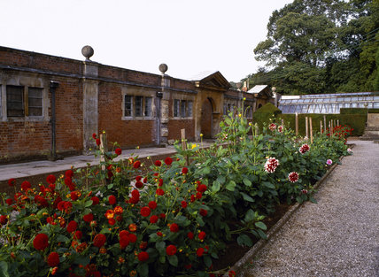 The North side of the Garden Buildings at Tyntesfield with dahlias growing in beds and a greenhouse off to the side