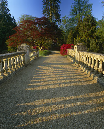 Looking along the bridge between Ten Foot Pond and Middle Lake at Sheffield Park Garden, with vibrant colours all around