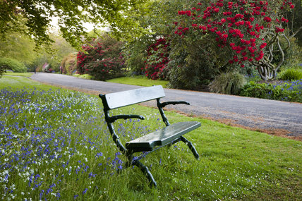 Bench beside the drive to the house at Trengwainton Garden, Cornwall.
