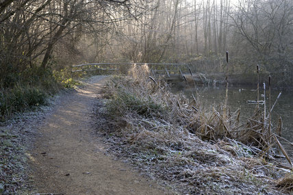 A winter walk in Roundshill Park Wood on the estate at Sissinghurst Castle Garden, near Cranbrook, Kent