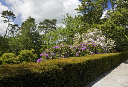 View into the garden from the terrace at Castle Drogo, Devon