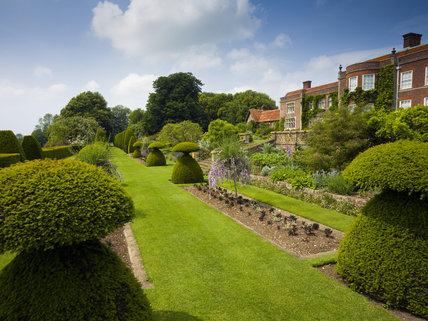 Yew topiary in the Sunken Garden in June, with the South front of Hinton Ampner, Hampshire