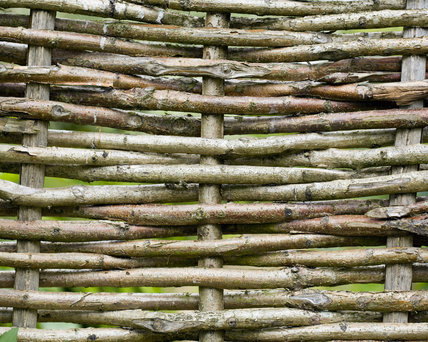 Close view of a wicker willow hurdle fence in the garden at Hinton Ampner, Hampshire