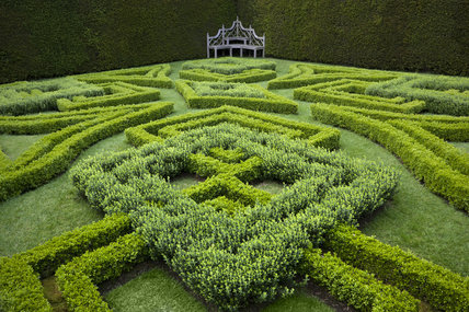 The Knot Garden at Antony, Cornwall