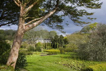The garden in April viewed from the old fish pond at Godolphin House, Helston, Cornwall