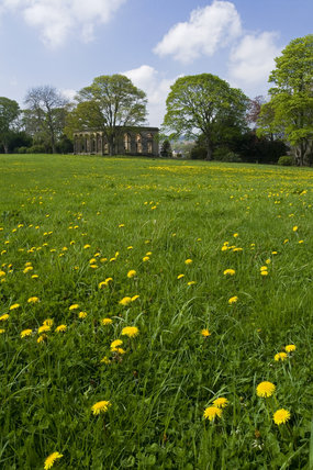 View across a wildflower meadow to the Orangery at Gibside, Newcastle upon Tyne