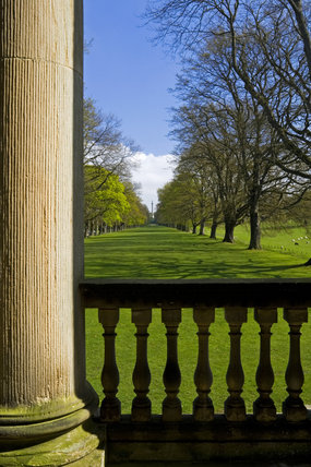 View down the Long Walk or Avenue of oak trees from the Chapel at Gibside, Newcastle upon Tyne