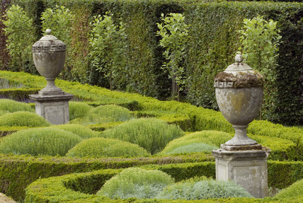 Ornamental urns and cotton lavender in the Parterre Garden at Seaton Delaval Hall, Northumberland