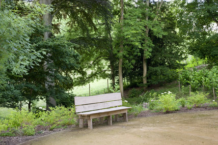 The Cabinet, an open area in the restored Wilderness area at Prior Park Landscape Garden, Bath