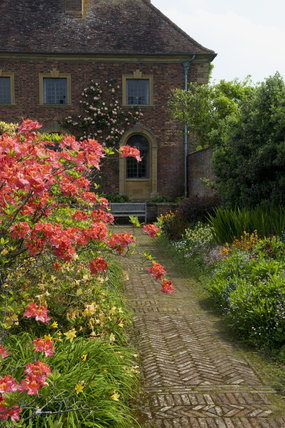 Brightly coloured azalea in the border, and the herring-bone patterned path leading to Strode House at Barrington Court, Somerset