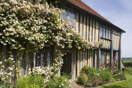 Roses climbing over the early sixteenth-century half-timbered house, Smallhythe Place, the home of actress Ellen Terry from 1899 to 1928 at  Tenterden, Kent