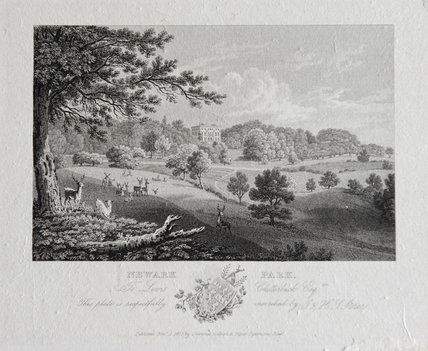 Etching of the Deer Park at Newark Park, Gloucestershire