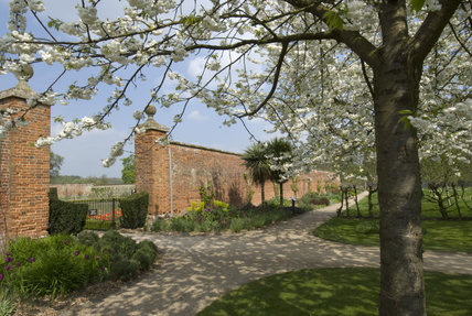 Entrance to the Walled Garden with a white cherry tree Prunus avium