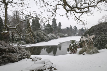 Snow at Sheffield Park, East Sussex
